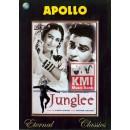 Junglee - dvd